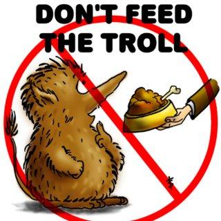 20070128233328-troll