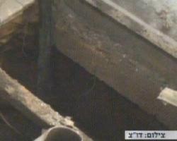 Aqui quedó enterrado el arabuco