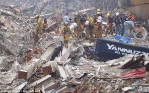 Chiens-11-septembre2