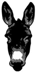 burro(5)