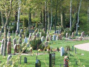cementerio-musulmc3a1n-en-malmoe-fuente-iglesia-sueca9