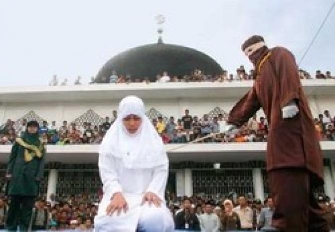 ESTA ES LA BASURA ISLAMICA QUE TIENE INFESTADA EUROPA   ESTA ESCORIA RELIGIOSA EXISTE EN CADA MEZQUITA   ESTA ESCRITA EN EL CORAN Y EN LA LEY SHARIA