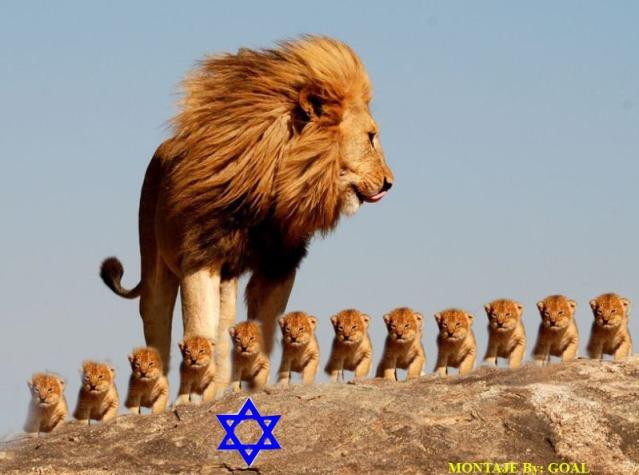 León de Juda