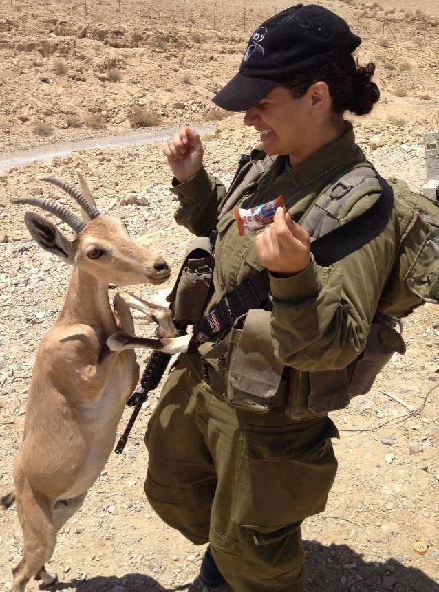 Nena IDF con cabrita