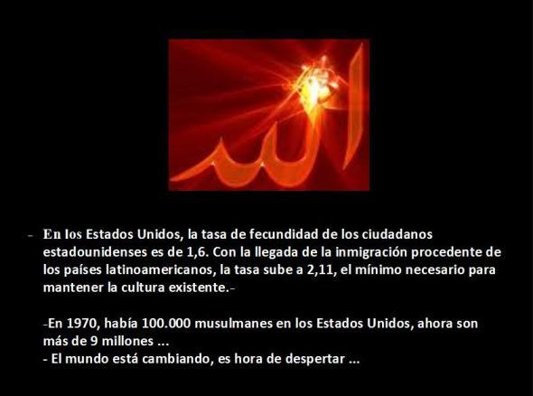 Diapositiva Demografia musulmana 11