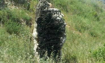 img498132