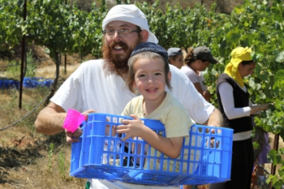 Agricultura israelí en Bat Ayin  Photo Credit: Gershon Elinson