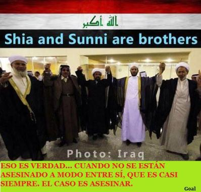 chiitas y sunitas hermanos