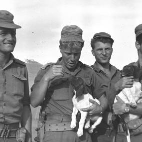 Guerra-de-los-seis-días-Fuerzas-de-Defensa-de-Israel-4