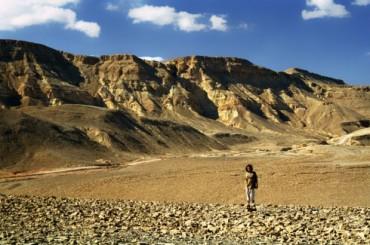 Arava desert negev