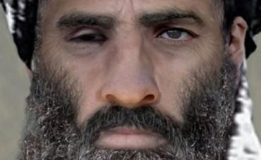 afghanistan-mollahomar-74aca