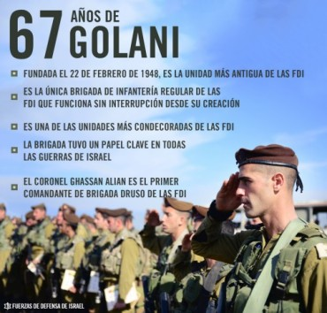 Golani-67-grafico