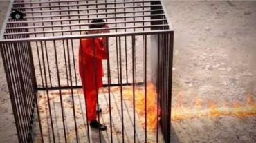 piloto-jordano-quemado--575x323
