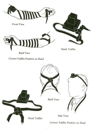 Tefillin-diagrams