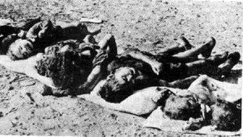 Massacre-denfants-uropéens-par-le-FLN-3-300x170