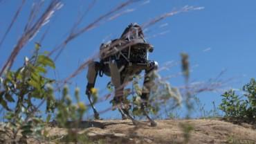 Robot perro mecanico de los Marines USA