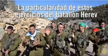 DRUSOS EN LAS IDF