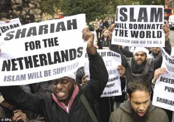 itainmuslimsharianetherlandsvi-vi