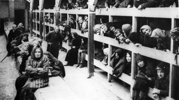 Auschwitz15enero