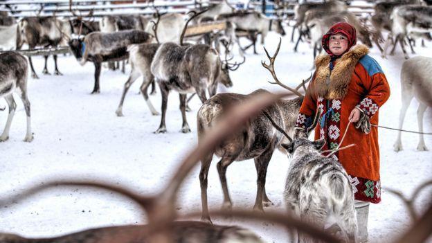 151201093959_siberia_lomakin_deers_woman_976x549_bbc_nocredit