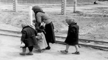 Judios bajo la barbarie nazi